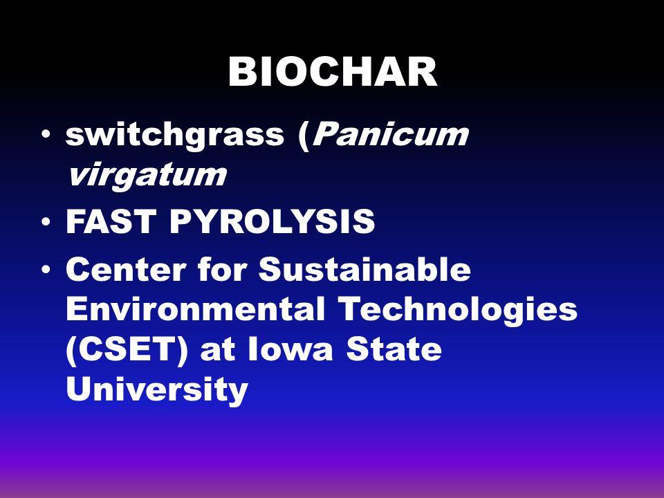BIOCHAR switchgrass (Panicum virgatum FAST PYROLYSIS
