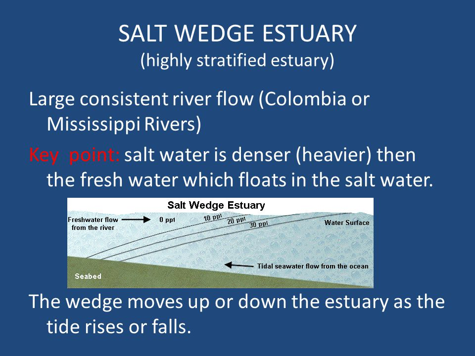 SALT WEDGE ESTUARY (highly stratified estuary)