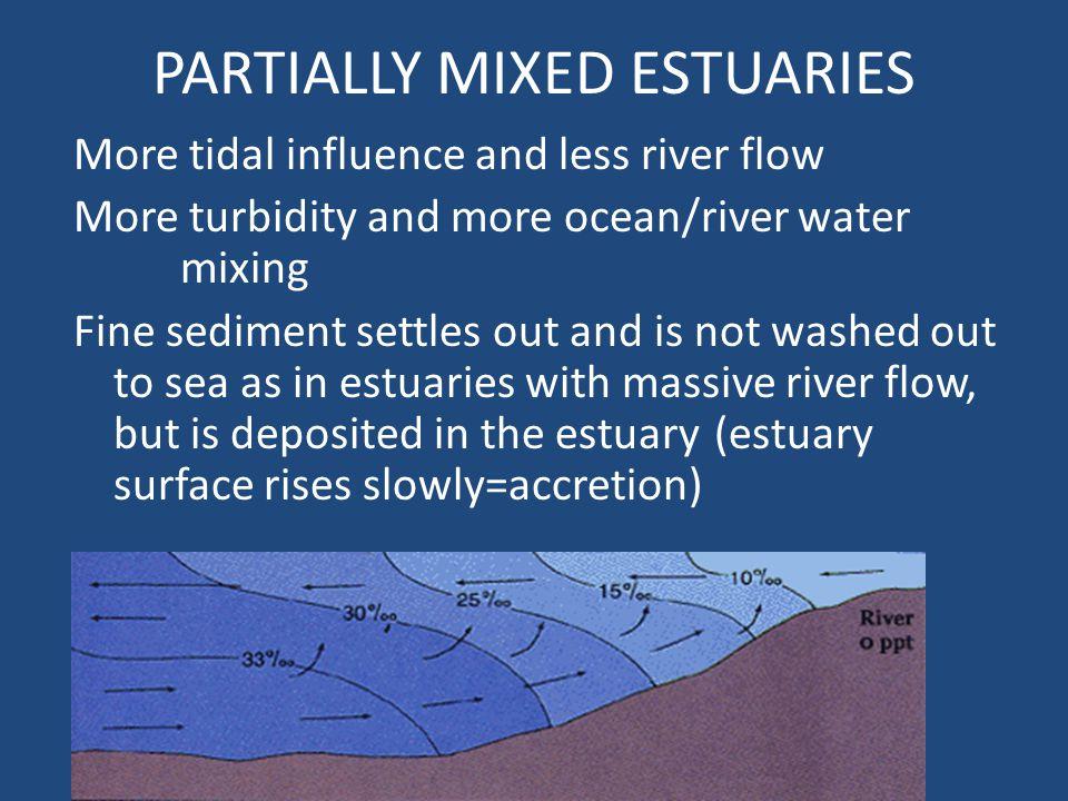 PARTIALLY MIXED ESTUARIES