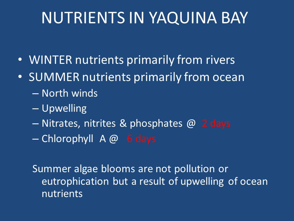 NUTRIENTS IN YAQUINA BAY
