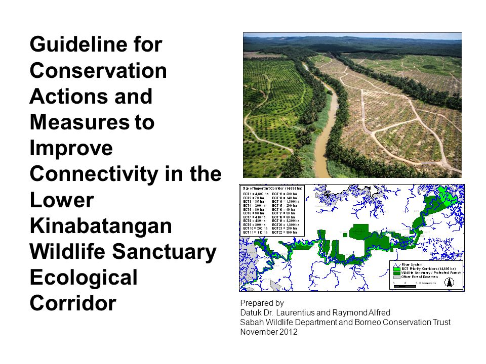 Guideline for Conservation Actions and Measures to