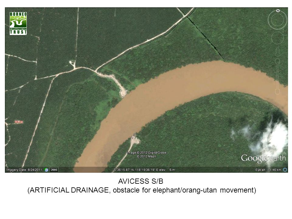 (ARTIFICIAL DRAINAGE, obstacle for elephant/orang-utan movement)
