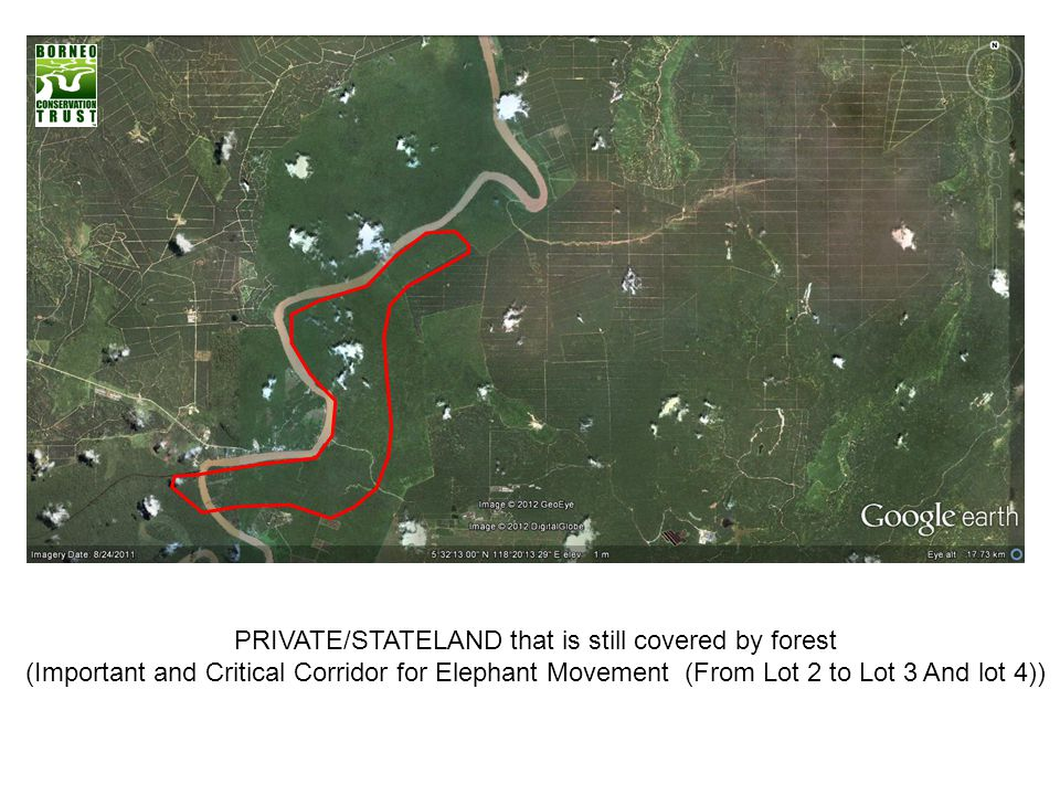 PRIVATE/STATELAND that is still covered by forest