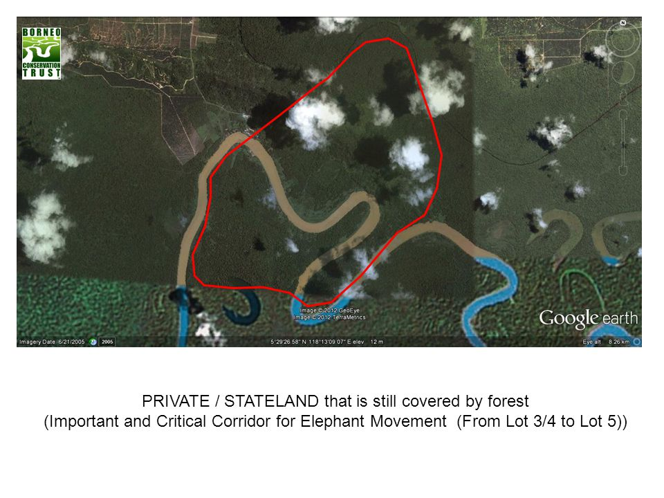 PRIVATE / STATELAND that is still covered by forest
