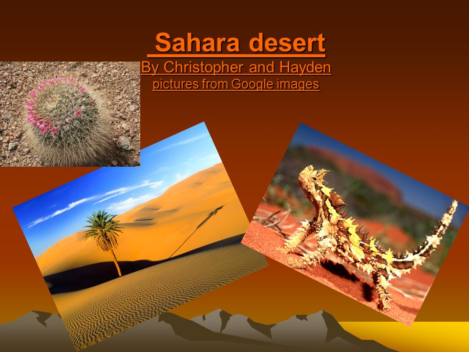 Sahara desert By Christopher and Hayden pictures from Google images