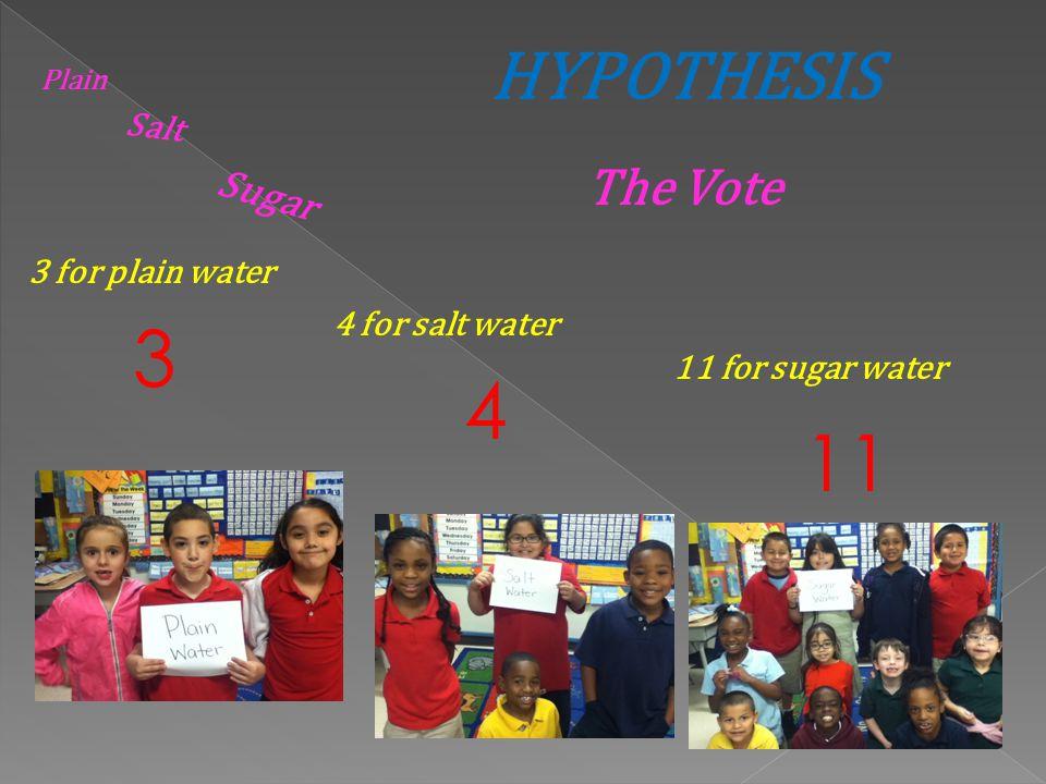 3 4 11 HYPOTHESIS The Vote Sugar Salt 3 for plain water
