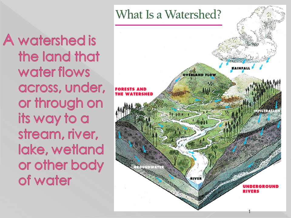 A watershed is the land that water flows across, under, or through on its way to a stream, river, lake, wetland or other body of water