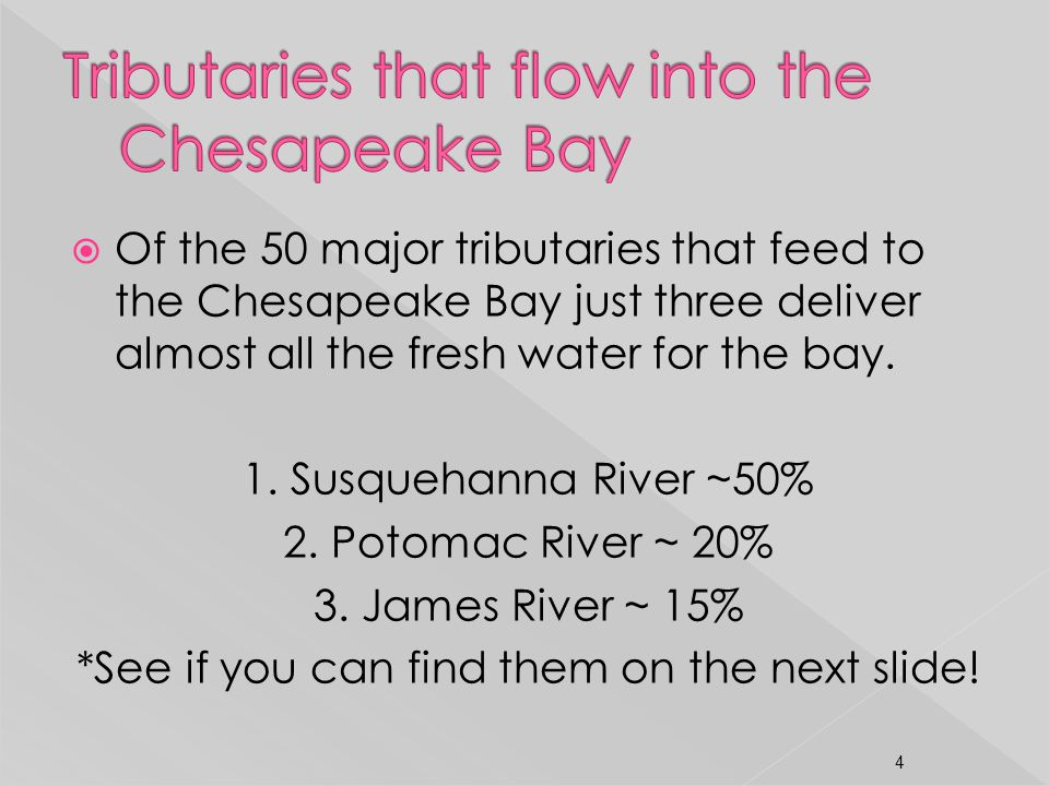 Tributaries that flow into the Chesapeake Bay