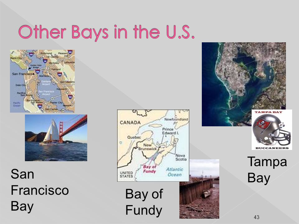 Other Bays in the U.S. Tampa Bay San Francisco Bay Bay of Fundy