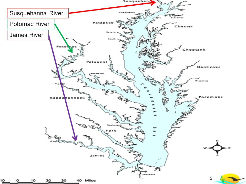 Susquehanna River Potomac River James River