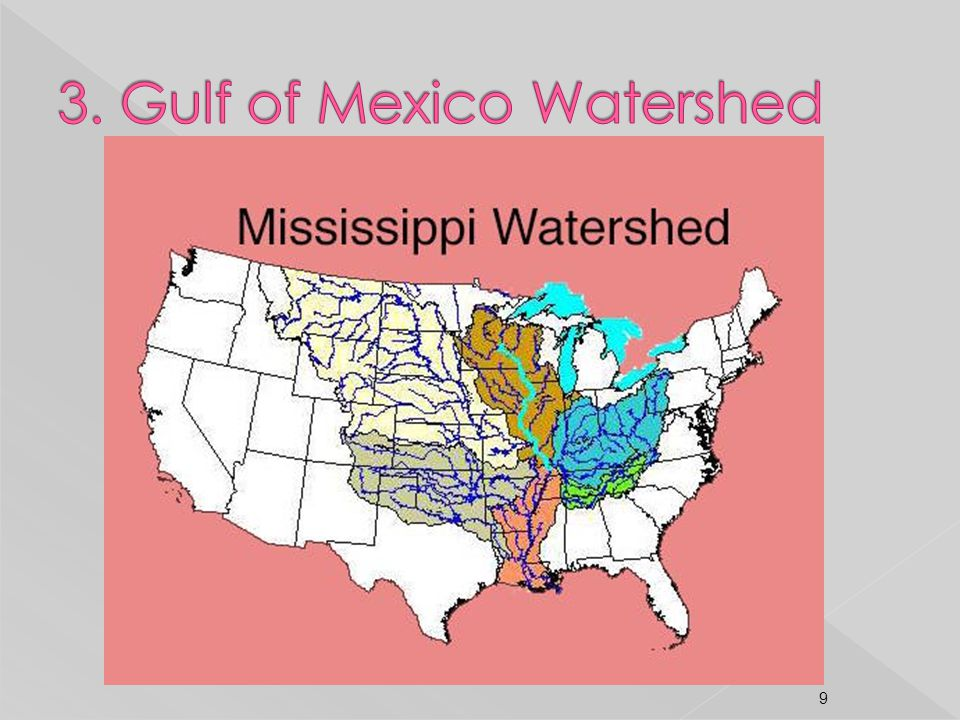 3. Gulf of Mexico Watershed