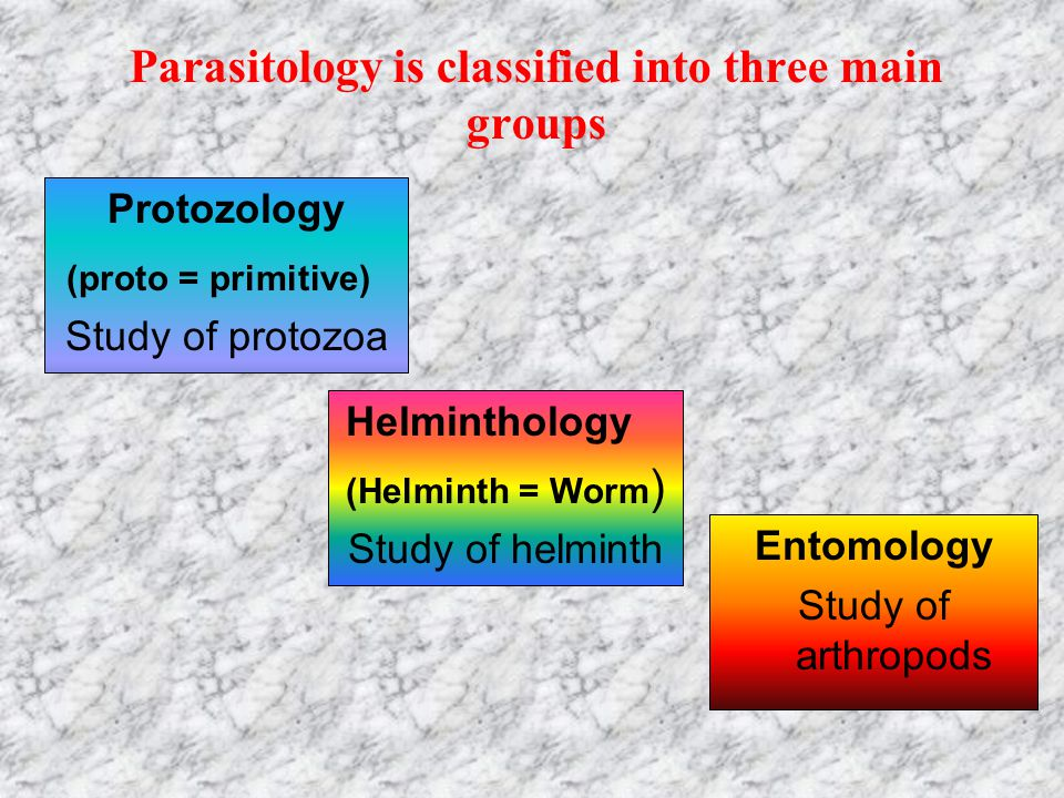 Parasitology is classified into three main groups