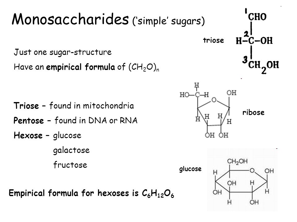 Monosaccharides ('simple' sugars)