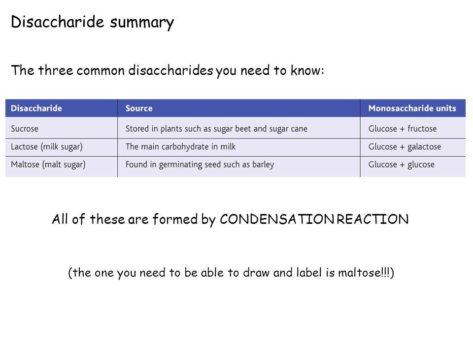 Disaccharide summary The three common disaccharides you need to know: