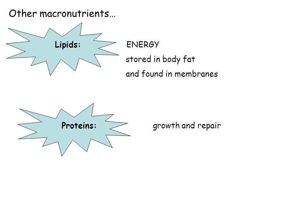 Other macronutrients…
