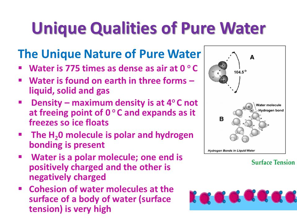 Unique Qualities of Pure Water
