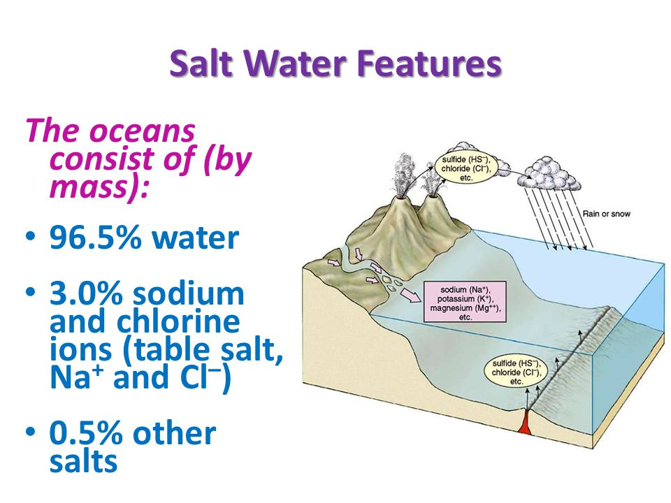 Salt Water Features The oceans consist of (by mass): 96.5% water