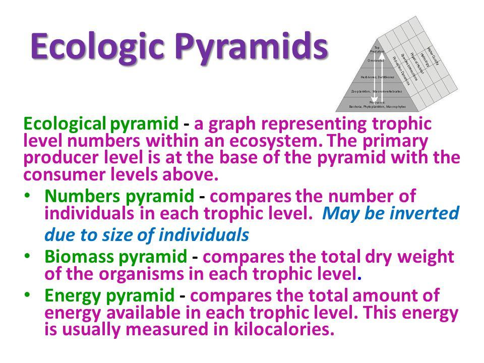 Ecologic Pyramids