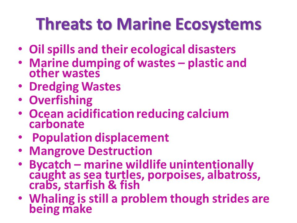 Threats to Marine Ecosystems