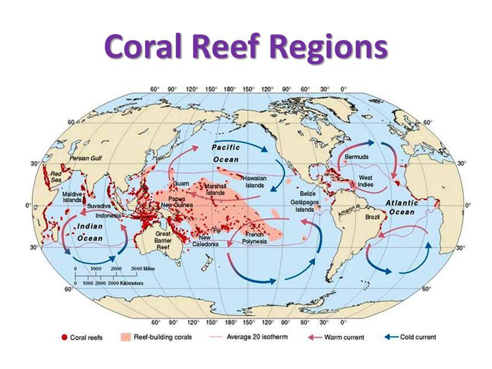 Coral Reef Regions