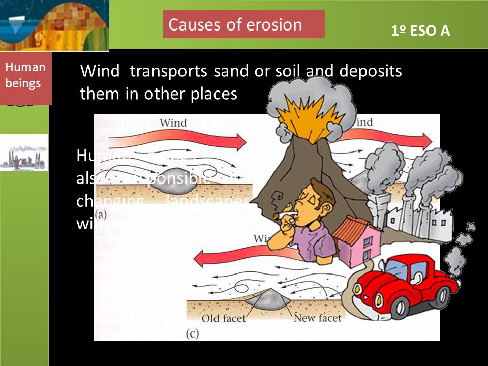 Wind transports sand or soil and deposits them in other places