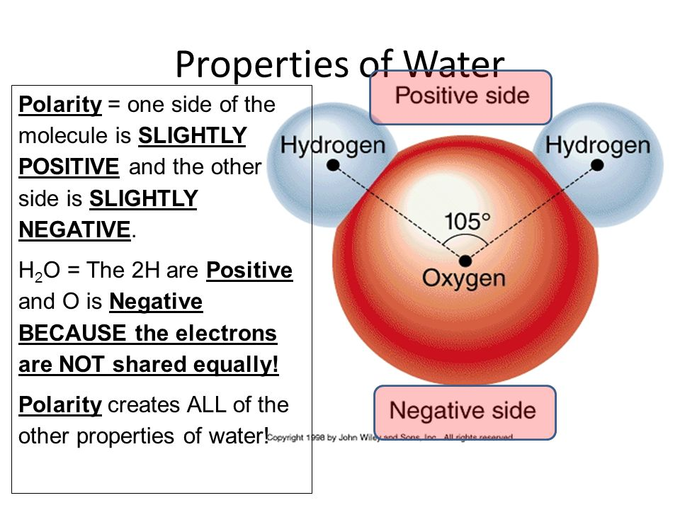 Properties of Water Polarity = one side of the molecule is SLIGHTLY POSITIVE and the other side is SLIGHTLY NEGATIVE.
