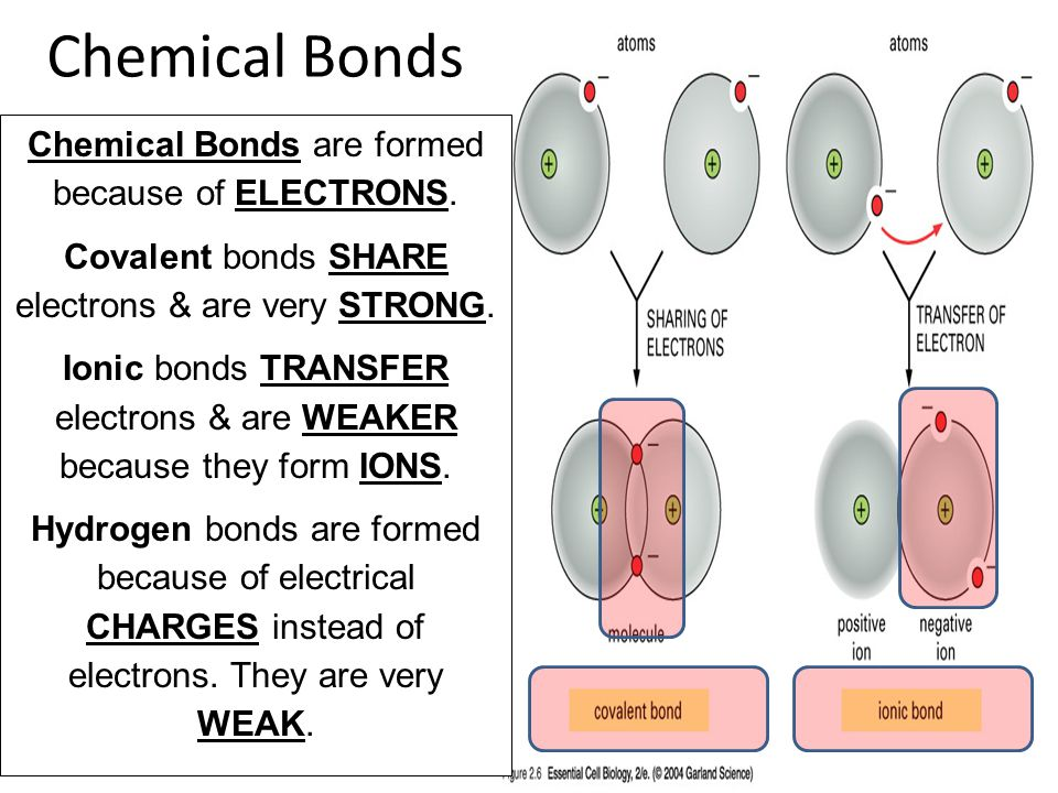 Chemical Bonds Chemical Bonds are formed because of ELECTRONS.