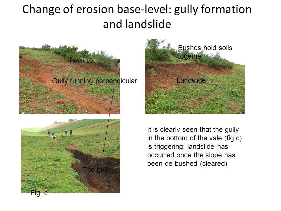 Change of erosion base-level: gully formation and landslide