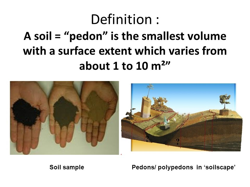Definition : A soil = pedon is the smallest volume with a surface extent which varies from about 1 to 10 m²