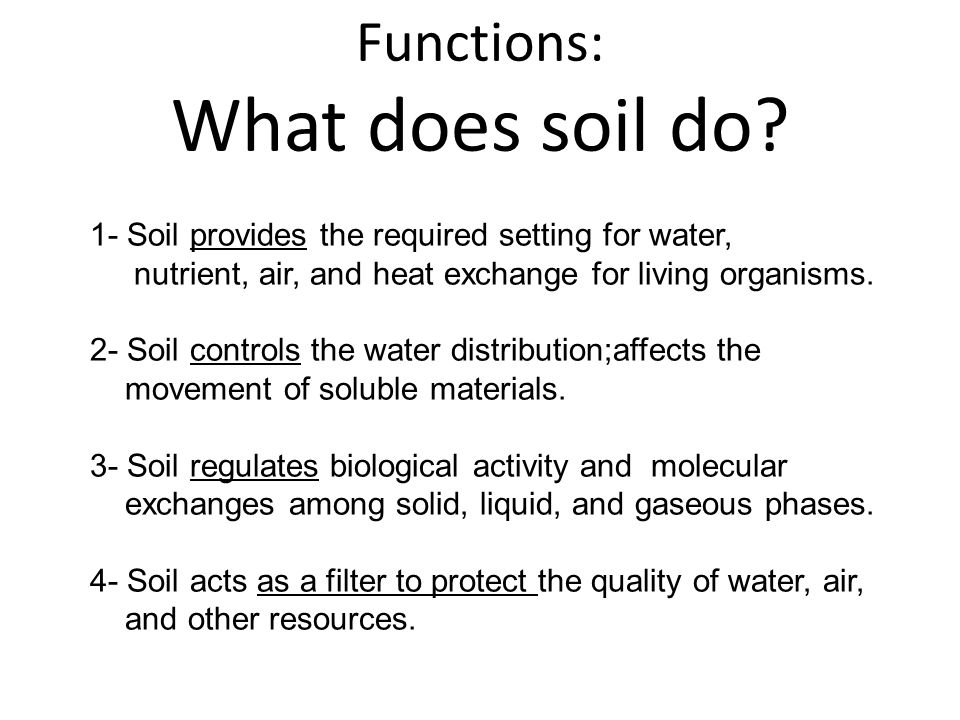 Functions: What does soil do