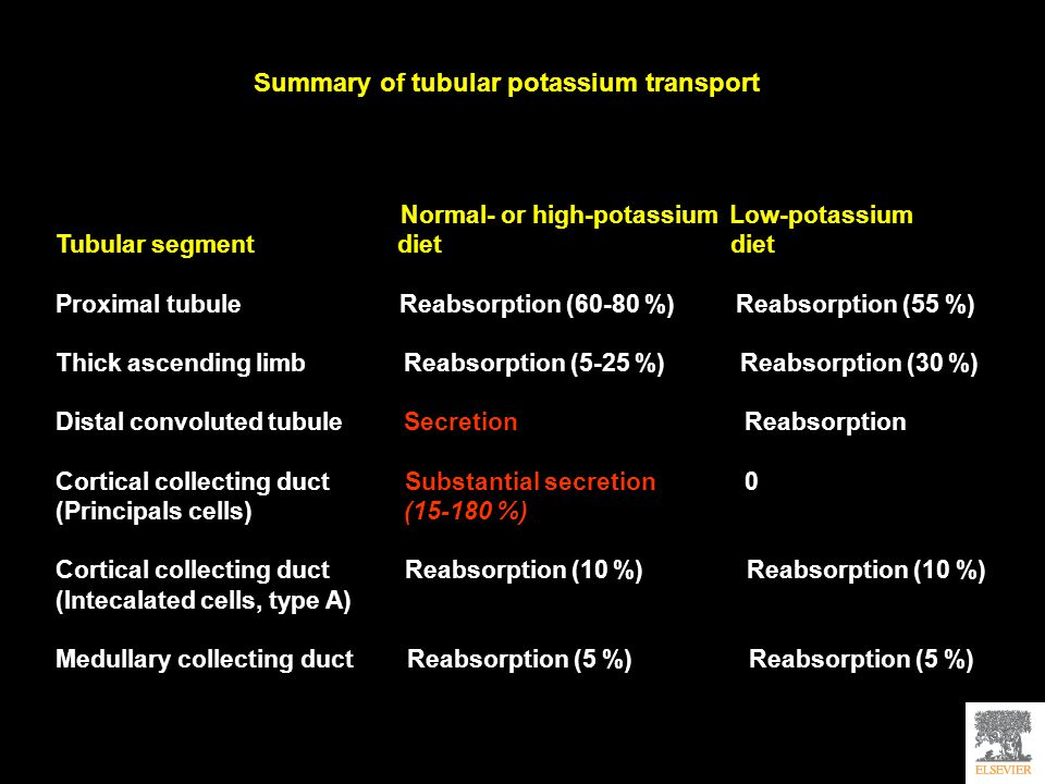 Summary of tubular potassium transport