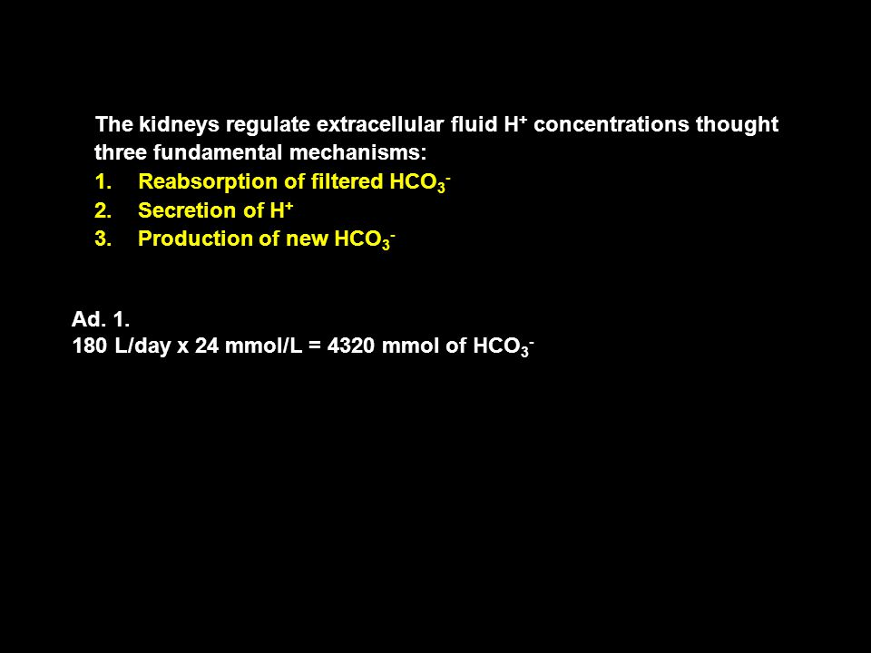 The kidneys regulate extracellular fluid H+ concentrations thought