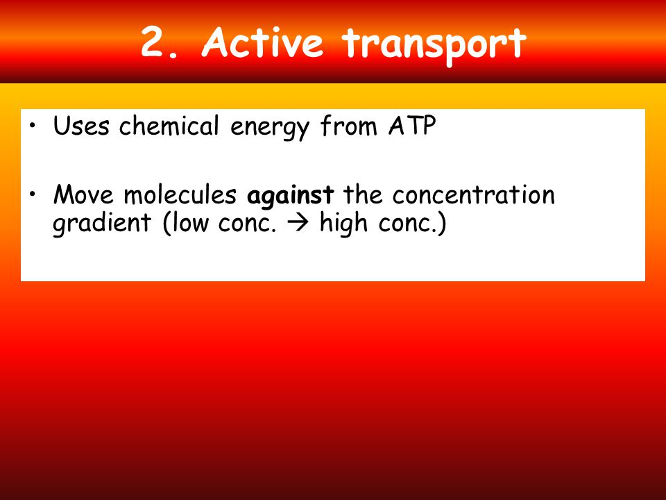 2. Active transport Uses chemical energy from ATP