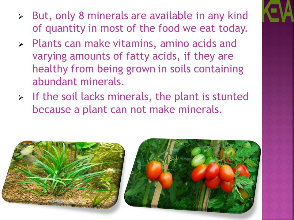 But, only 8 minerals are available in any kind of quantity in most of the food we eat today.