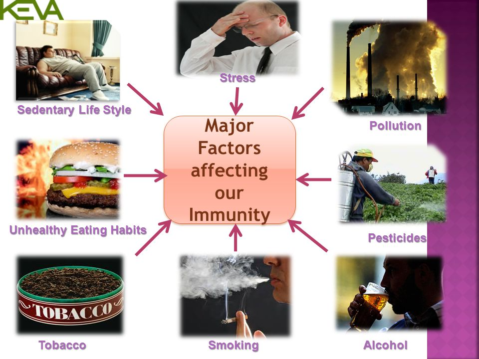 Major Factors affecting our Immunity