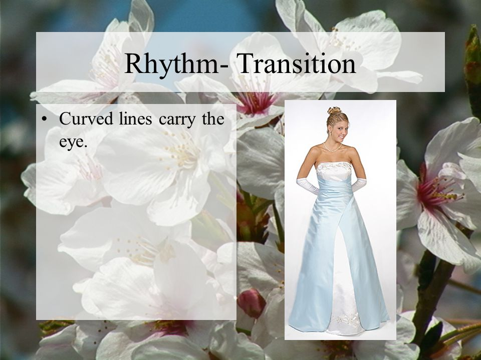 Rhythm- Transition Curved lines carry the eye.