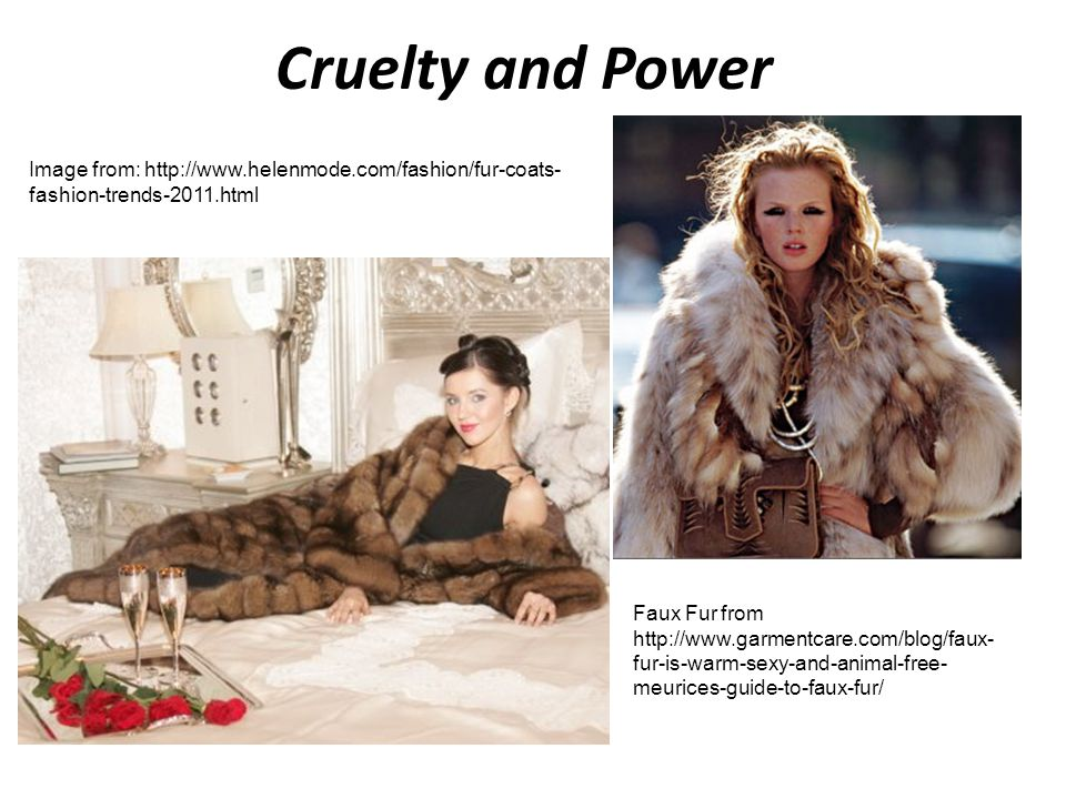 Cruelty and Power Image from: http://www.helenmode.com/fashion/fur-coats-fashion-trends-2011.html.