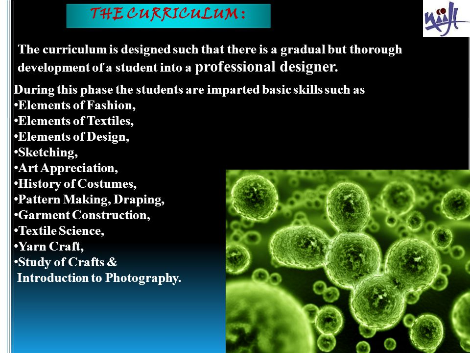THE CURRICULUM : The curriculum is designed such that there is a gradual but thorough development of a student into a professional designer.