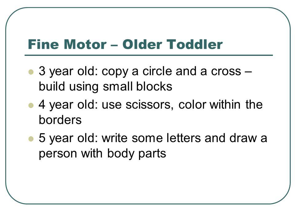 Fine Motor – Older Toddler