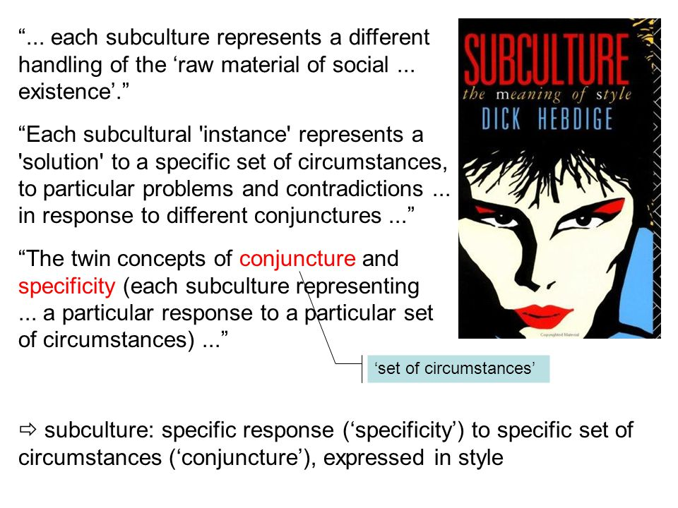 ... each subculture represents a different handling of the 'raw material of social ... existence'.
