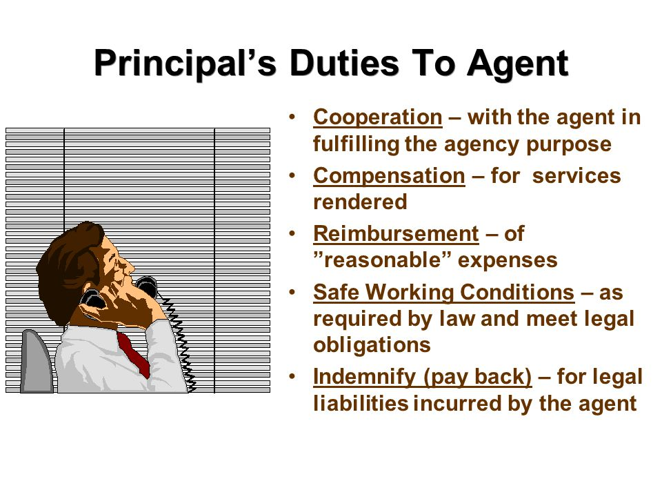 Principal's Duties To Agent