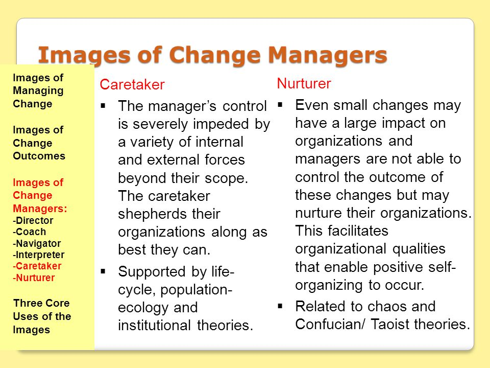 Images of Change Managers