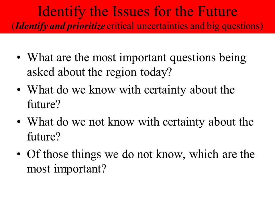 Identify the Issues for the Future (Identify and prioritize critical uncertainties and big questions)