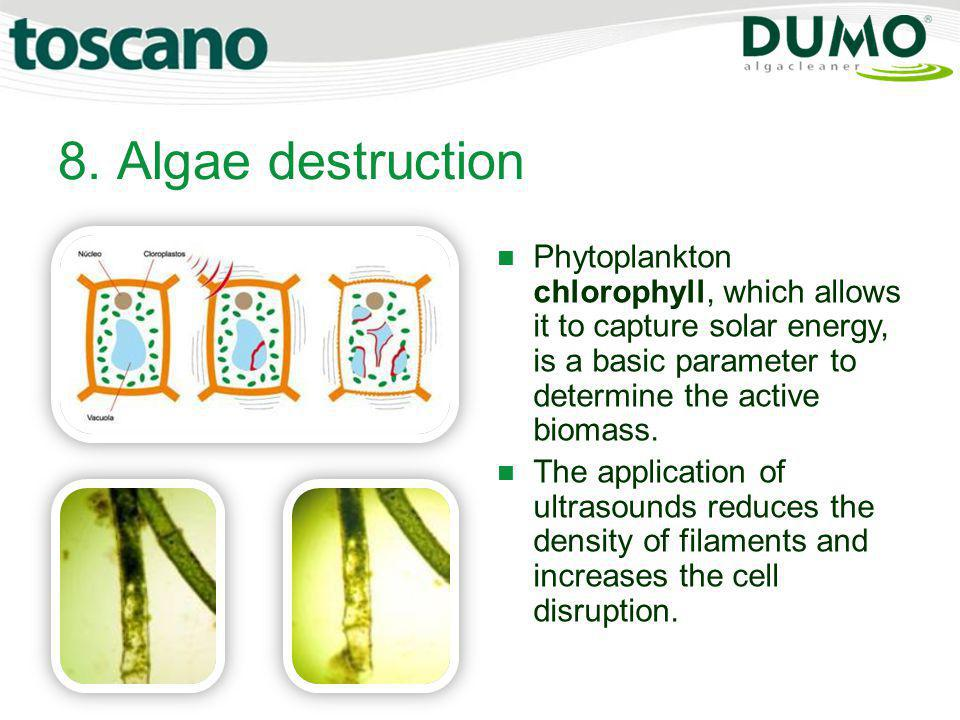 8. Algae destruction Phytoplankton chlorophyll, which allows it to capture solar energy, is a basic parameter to determine the active biomass.