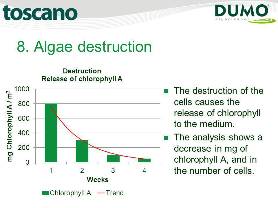 8. Algae destruction The destruction of the cells causes the release of chlorophyll to the medium.