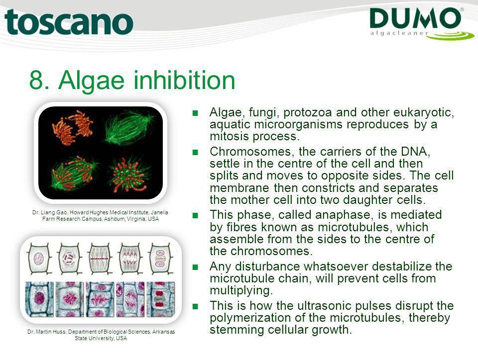 8. Algae inhibition Dr. Liang Gao, Howard Hughes Medical Institute, Janelia Farm Research Campus, Ashburn, Virginia, USA.