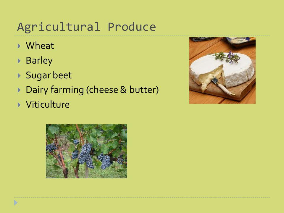 Agricultural Produce Wheat Barley Sugar beet