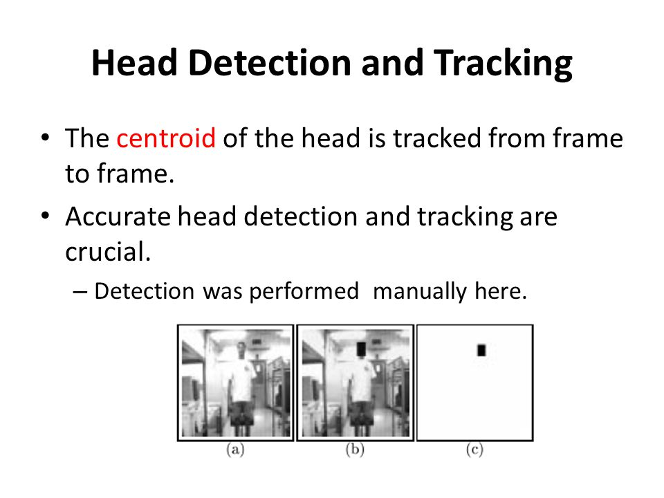 Head Detection and Tracking