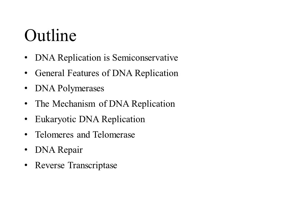 Outline DNA Replication is Semiconservative
