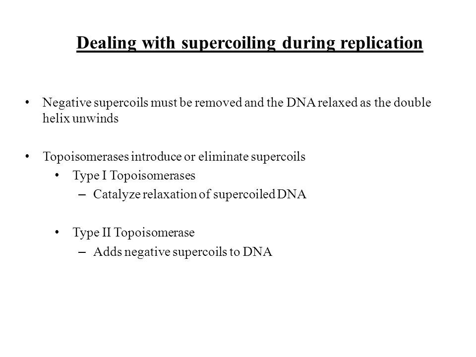 Dealing with supercoiling during replication